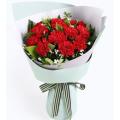 carnation-flowers