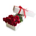 rose-in-box