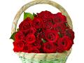 rose-in-basket